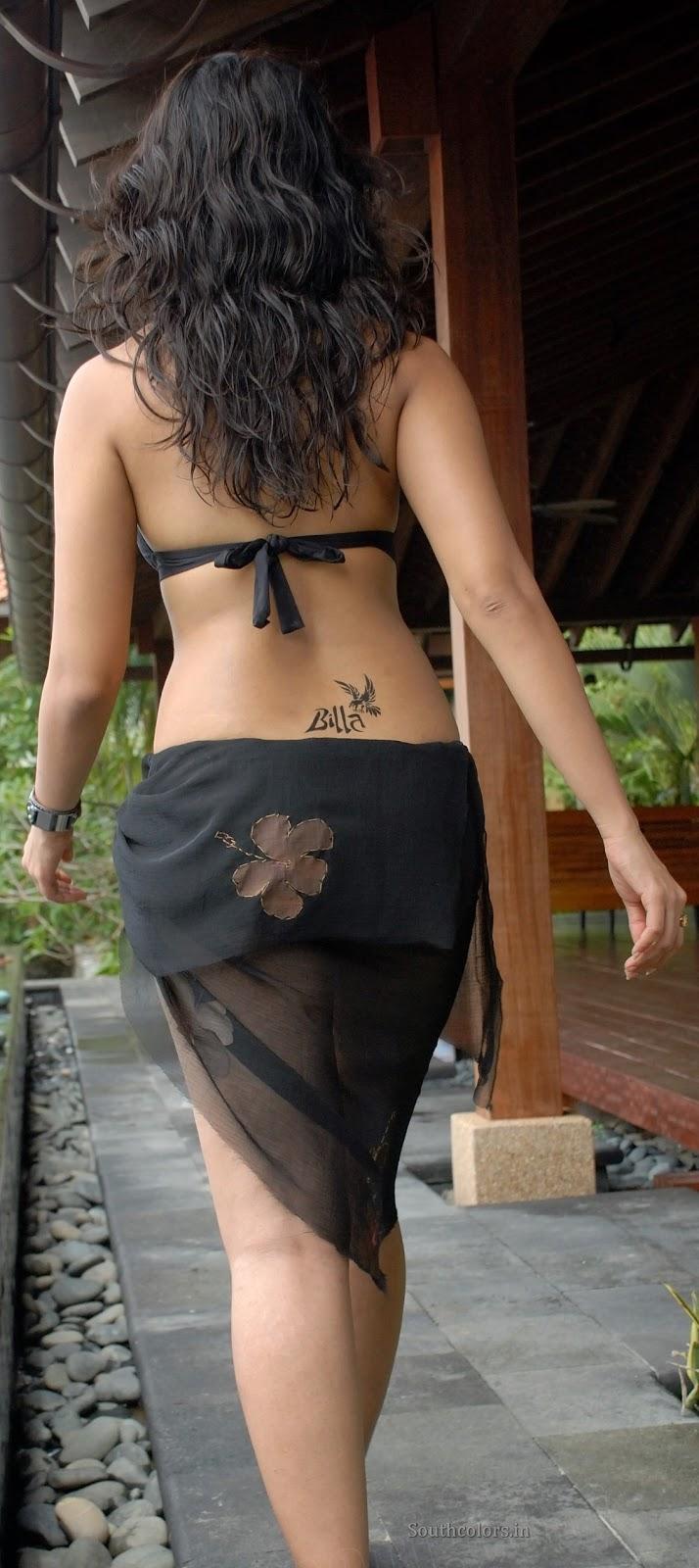 actress anushka shetty hot bikini navel show photos southcolors 10