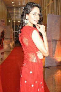 actress pragya jaiswal hot backless photos southcolors 4
