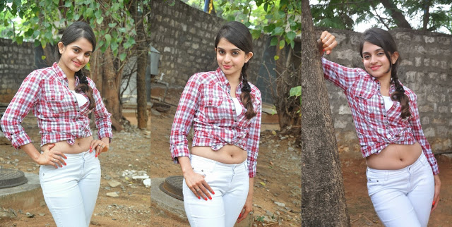 Actress Sheena Shahabadi Hot Photos