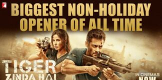 Tiger Zinda Hai Movie Crosses Rs 100 Cr
