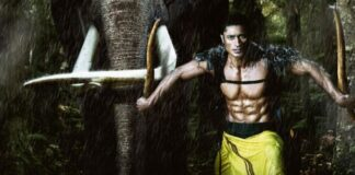 Vidyut Jammwal Pays Tribute to Lord Elephant in Junglee Teaser