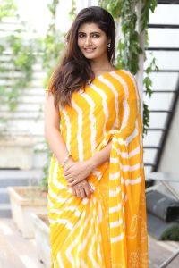 actress ashima narwal latest photos in yellow saree 10