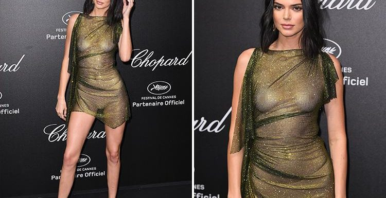 kendall jenner goes braless at cannes film festival party 11
