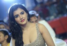 Malvika Sharma Hot Stills At Nela Ticket Audio Launch