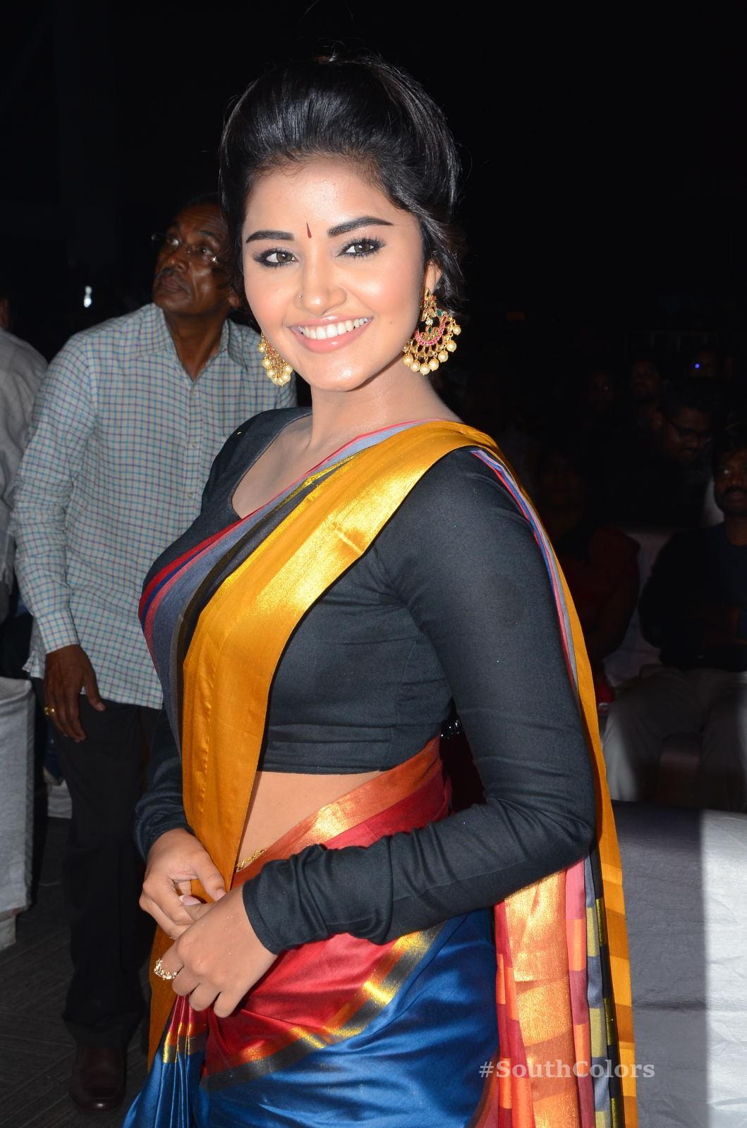 Anupama Parameswaran Saree Photos at Tej I Love U Audio Launch 10