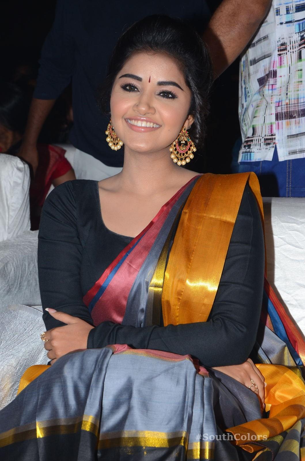 Anupama Parameswaran Saree Photos at Tej I Love U Audio Launch 11