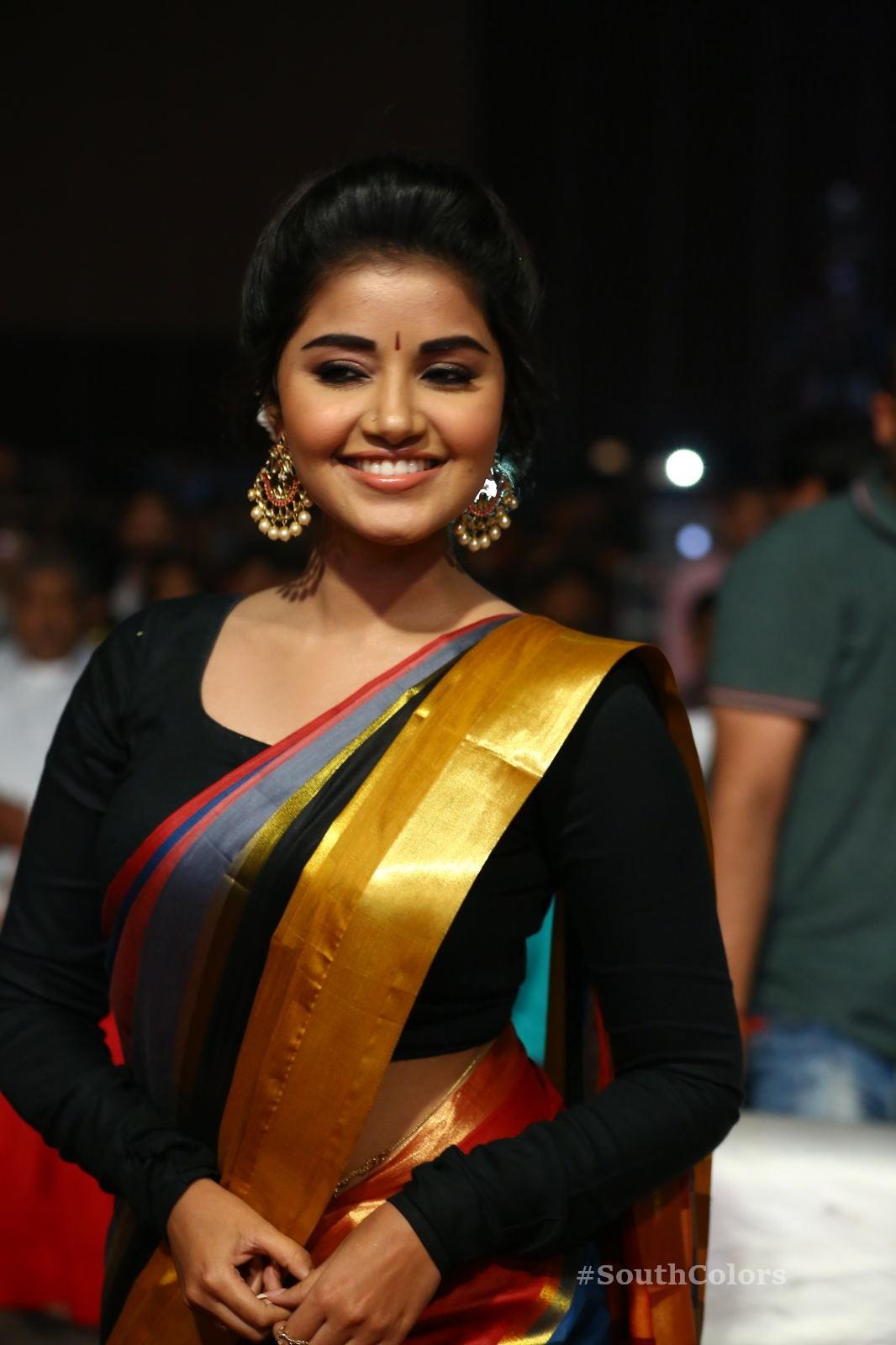 Anupama Parameswaran Saree Photos at Tej I Love U Audio Launch 12