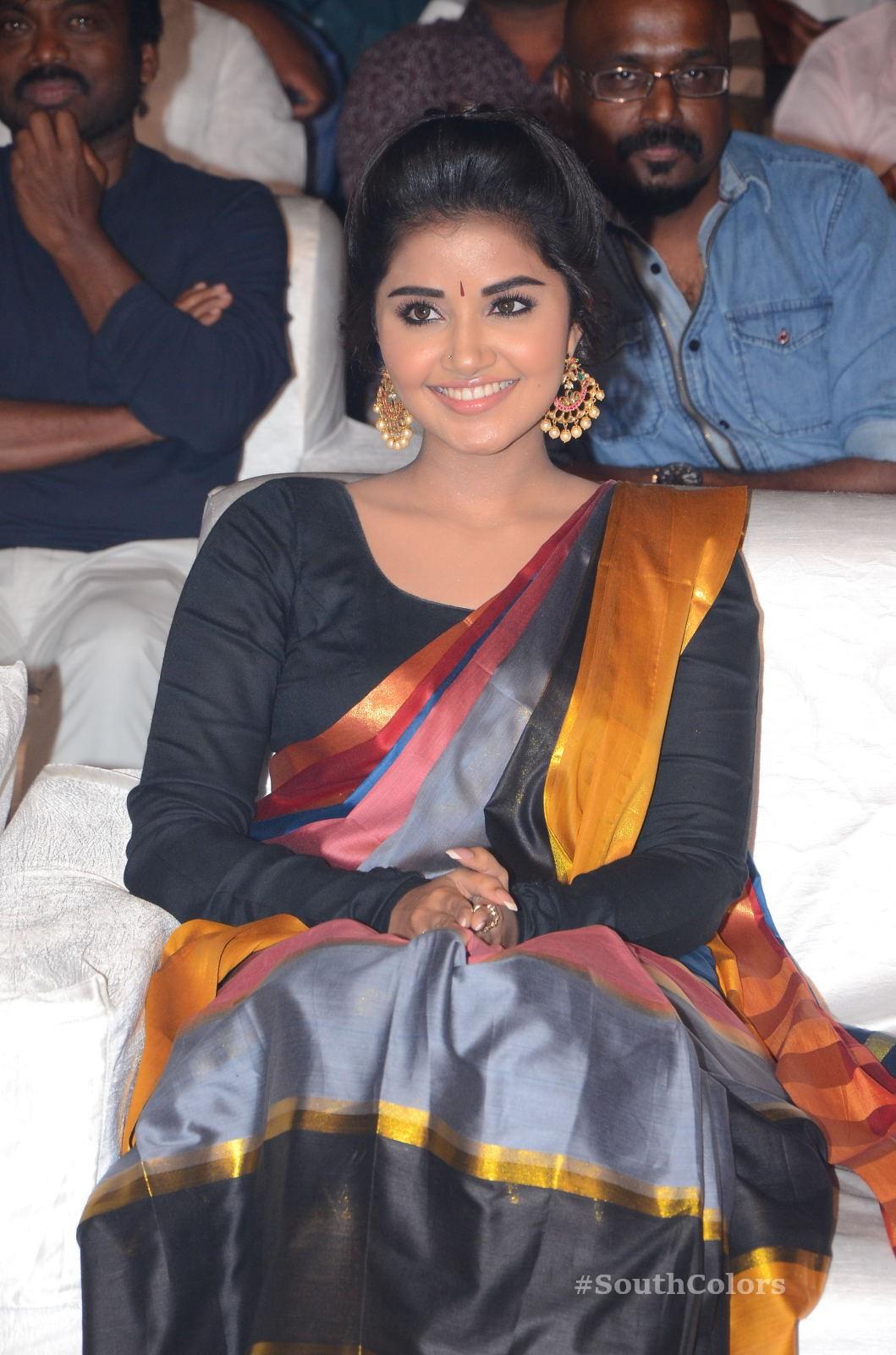 Anupama Parameswaran Saree Photos at Tej I Love U Audio Launch 18