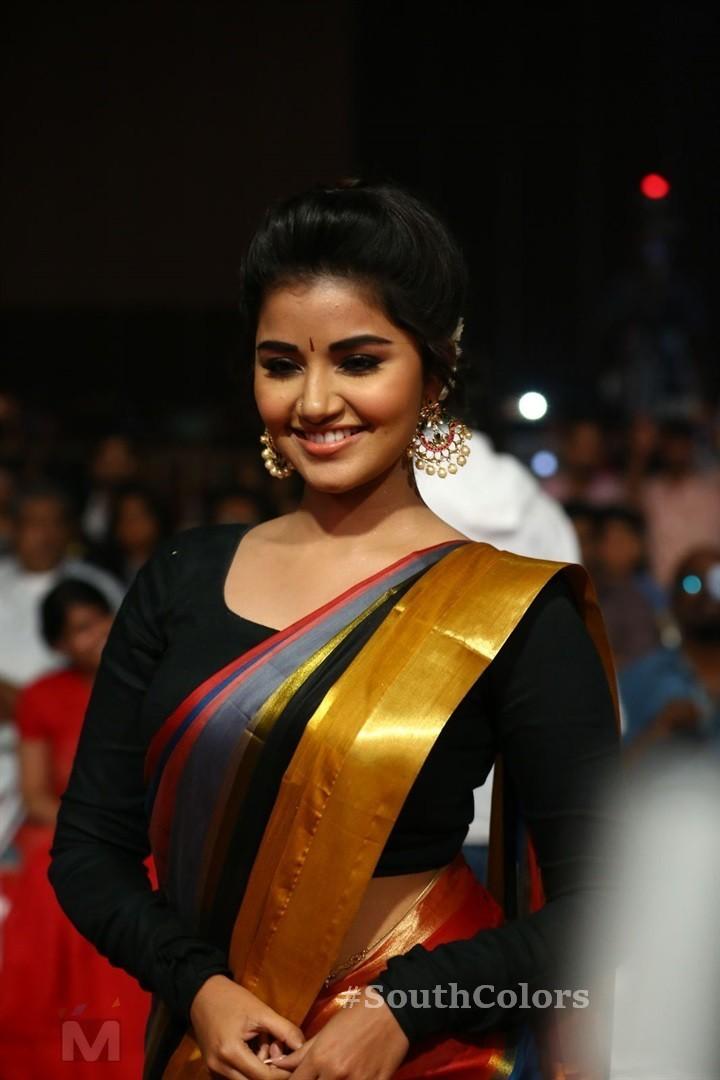 Anupama Parameswaran Saree Photos at Tej I Love U Audio Launch 3