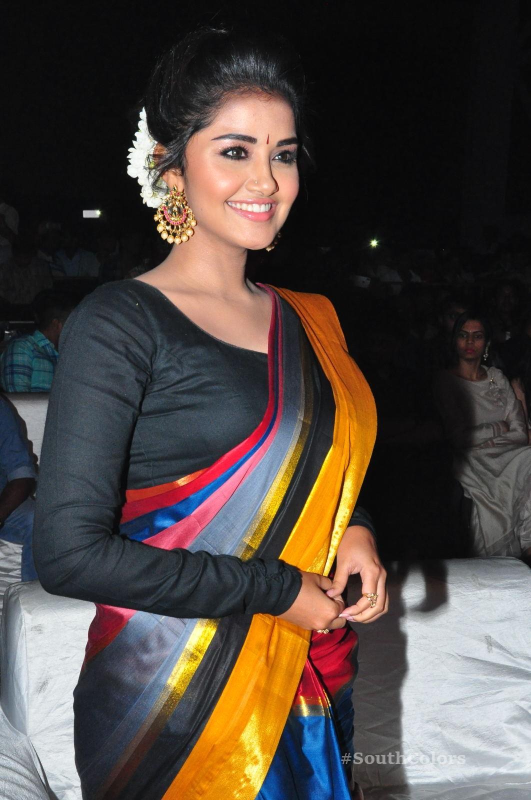 Anupama Parameswaran Saree Photos at Tej I Love U Audio Launch 8
