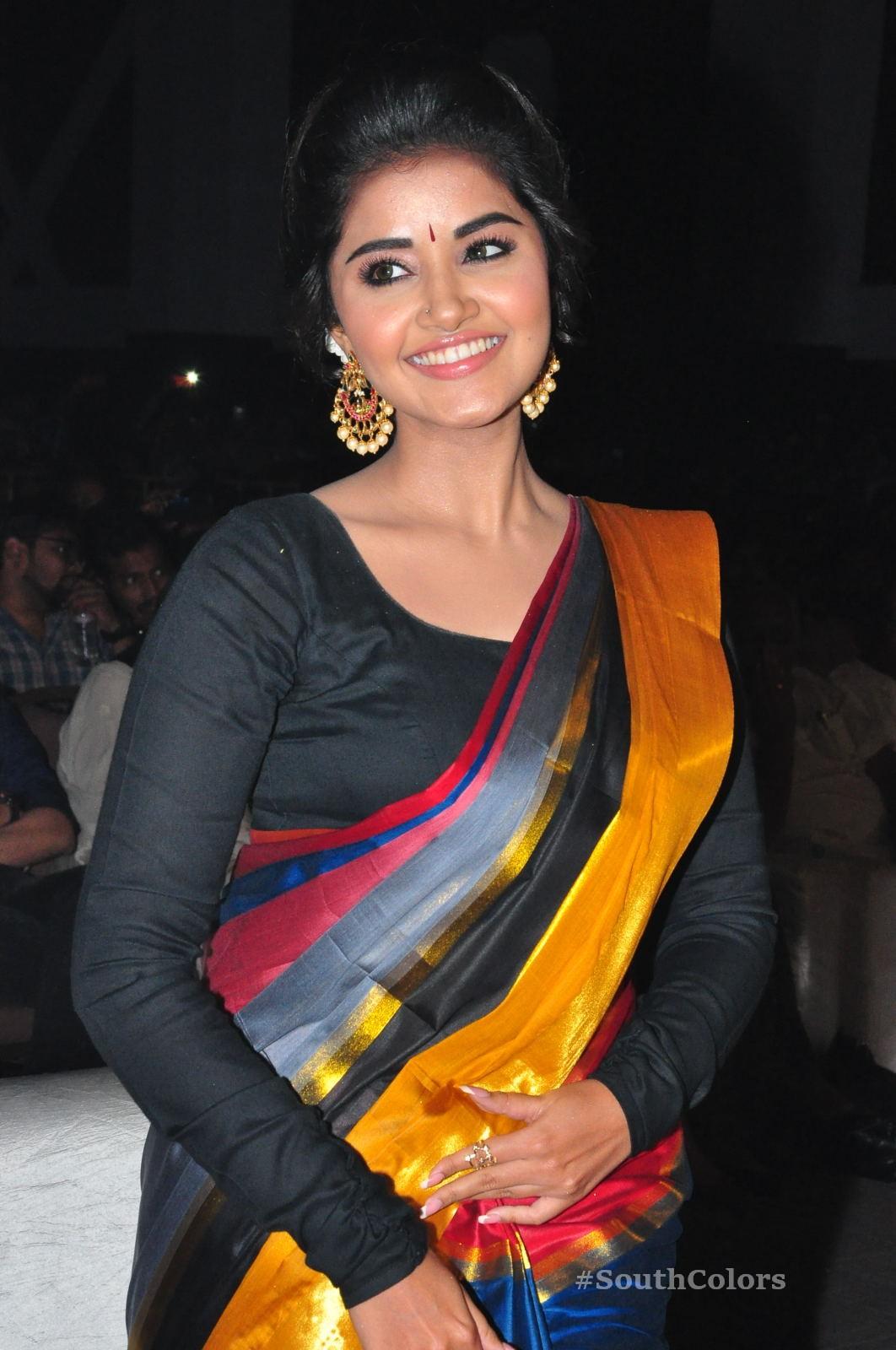 Anupama Parameswaran Saree Photos at Tej I Love U Audio Launch 9