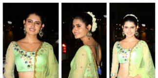 Ashima Narwal Saree Photos At 65th Filmfare Awards South 2018