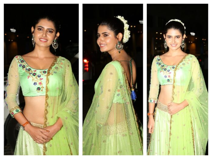 Ashima Narwal Saree Photos At 65th Filmfare Awards South 2018