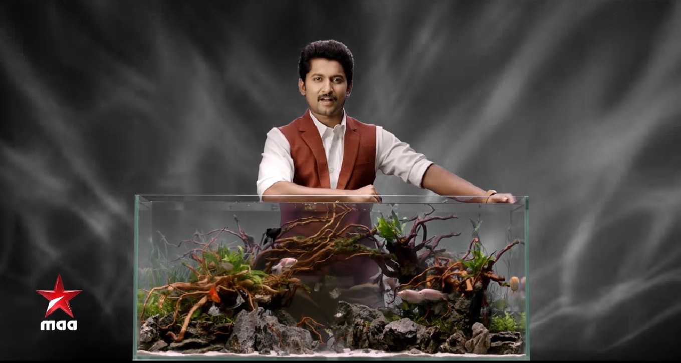 Bigg Boss Telugu Season 2 Contestants List