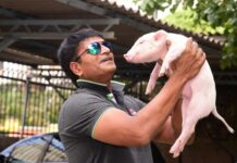 Actor Ravi Babu Fitness Challenge with Piglet