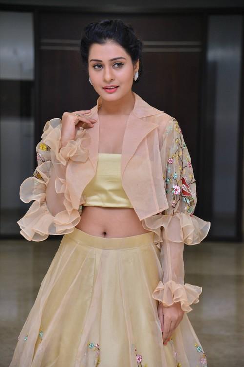 Actress Payal Rajput Photos at RX100 Movie Audio Launch
