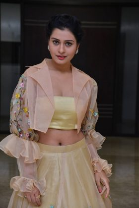 actress payal rajput photos at rx100 movie audio launch southcolors 12