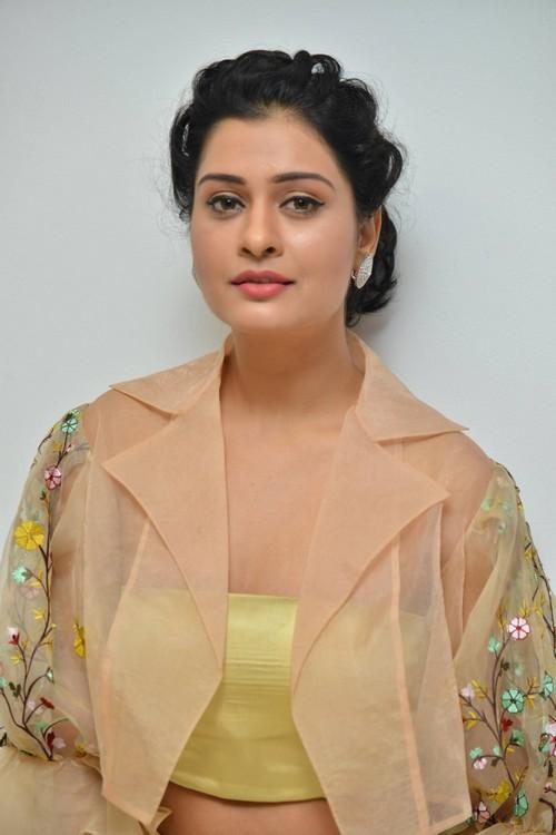 actress payal rajput photos at rx100 movie audio launch southcolors 2