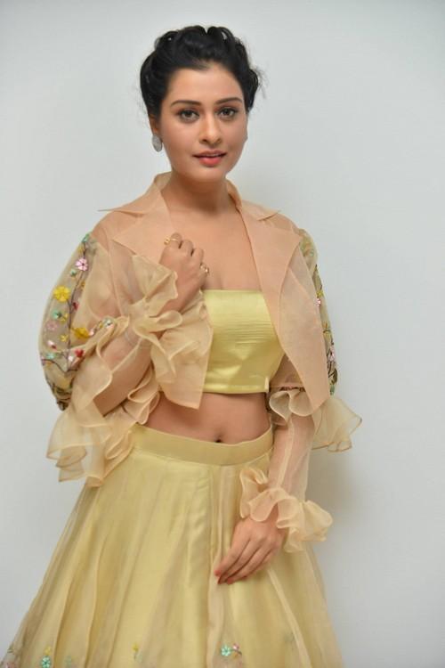 actress payal rajput photos at rx100 movie audio launch southcolors 5
