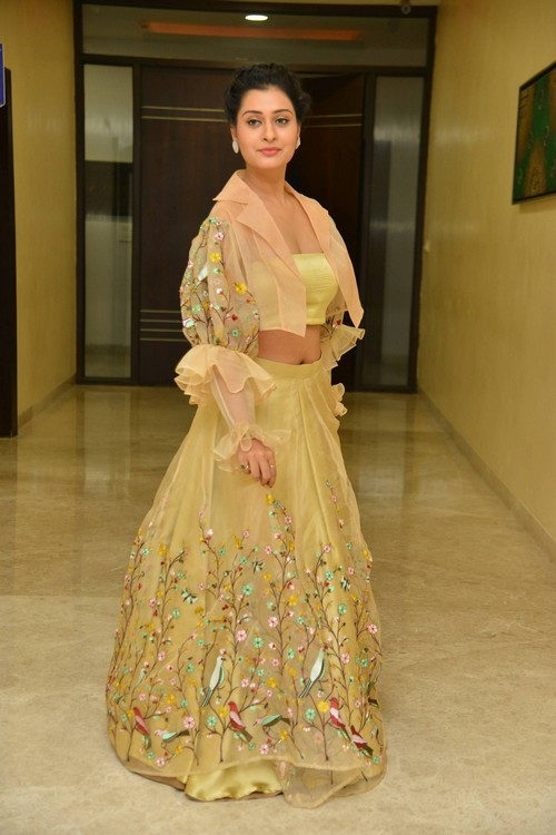 actress payal rajput photos at rx100 movie audio launch southcolors 8