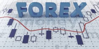 Fake Online Forex Trade Platform Busted in Dadar
