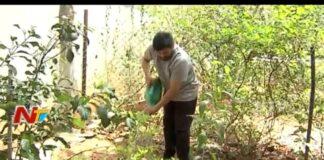 MegaStar Chiranjeevi Accepted Green Challenge