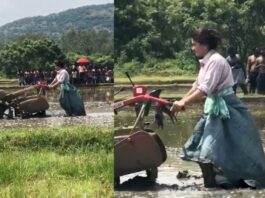 Rashmika Mandanna turns farmer and ploughing the Soil